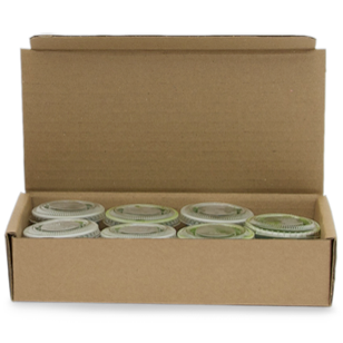 frozen wheatgrass juice shot box